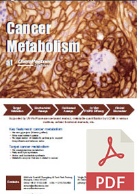 Cancer Metabolism